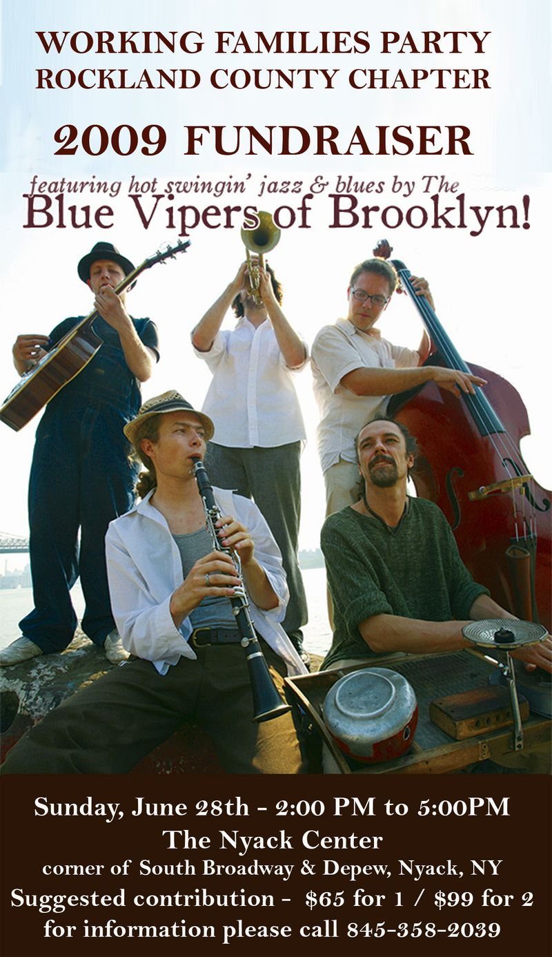 Blue Vipers Leaflet